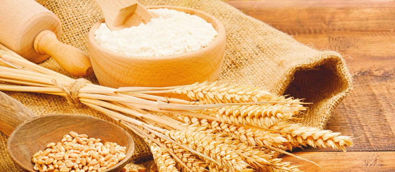 Macina cereali Milla su agritechstore