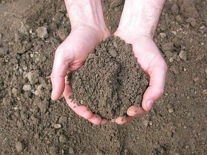 Pacchetto analisi terreno Ai Fini Agronomici