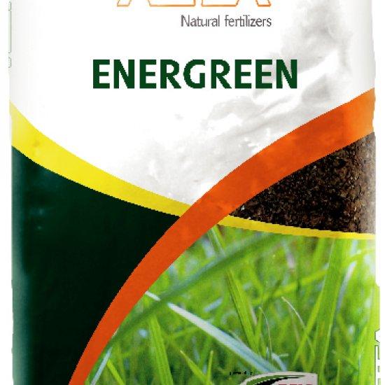 Energreen 12054mg4feznmn