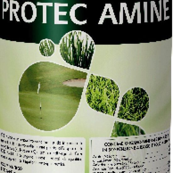 Protec Amine Concime Altea Npk 42815