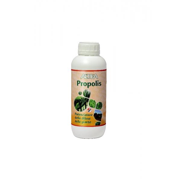 PROPOLIS - Fitostimolante naturale, Flacone da Litri 1