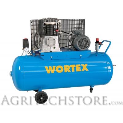 Compressore Carrellato - WT 300/540 - 300 Litri