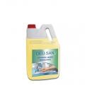 Deli San - Detergente per mani Igienizzante Tanica 5 Kg.