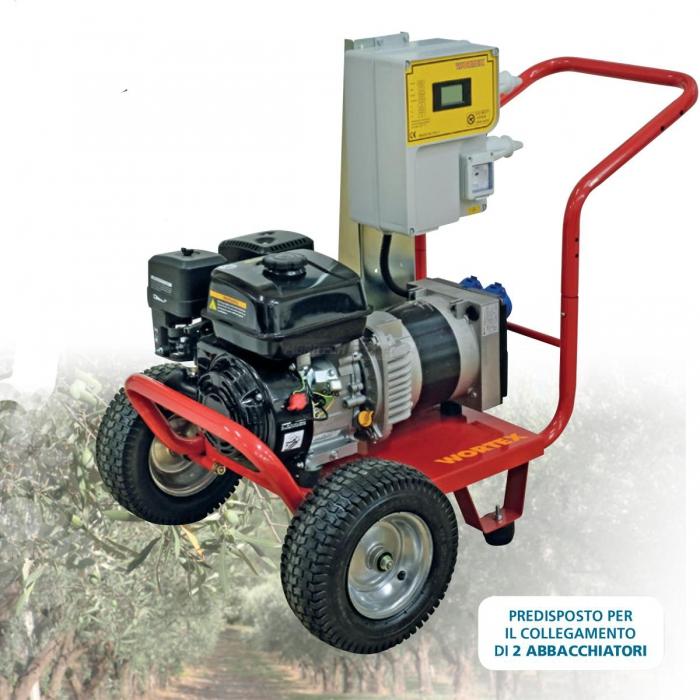 Generatore LWS 4000 C/QUADRO 12V - 60A