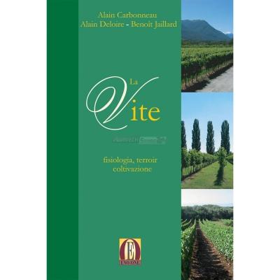La Vite: fisiologia, terroir e coltivazione